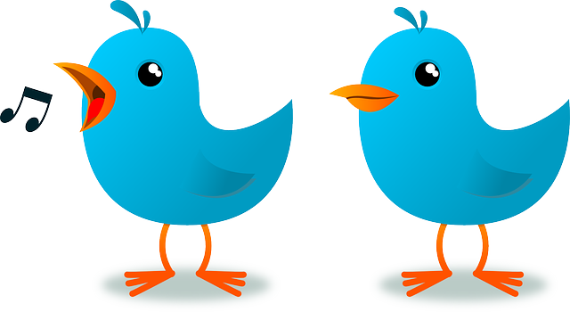 How To Attract Potential Customers Using Twitter