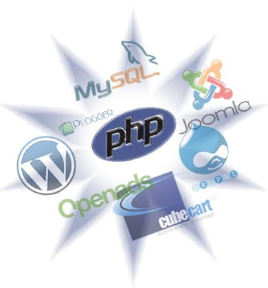 Overview of Programming Languages Used for Custom Web Development