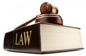 The Legalities in Fighting the Case