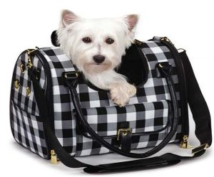 Getting A Good Carrier For Your Pet