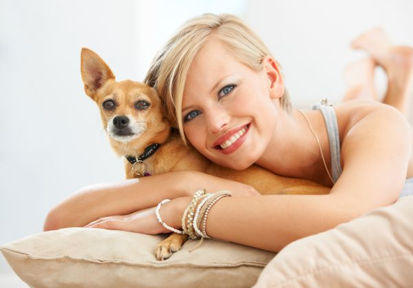 Enjoy Well Being With Dignified Pet Services and Emotional Support Animal Regulations