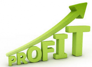 Business Startups 101: How To Ensure Your New Business Makes A Profit