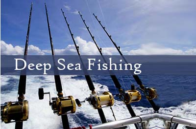 Deep Sea Fishing Q&A – Your Questions Answered