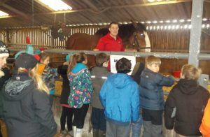 Top Reasons Farm Parks Make Great For School Trips