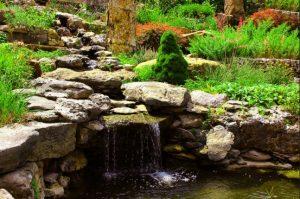 General Guide: TOP 5 Helpful Tips To Organize Alpine Garden