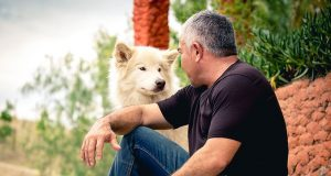Breeds Of Fearful Dogs